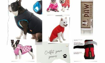 Outfit Para Perros