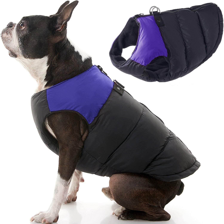 Chaleco con Cierre Espalda Negro Morado para Perros