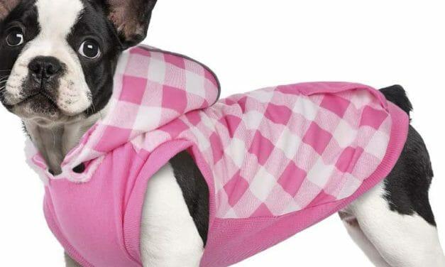 Chaqueta con Capucha para Perros