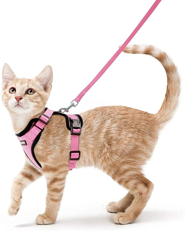 Arnés Pink para Gatos