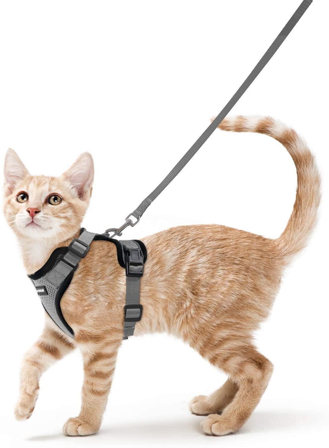 Arnés Gris para Gatos