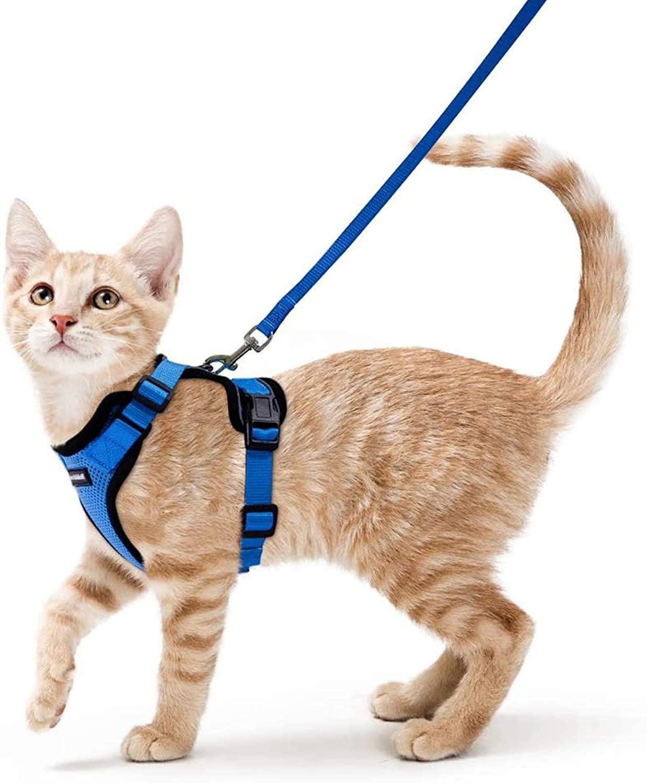 Arnés Navy para Gatos