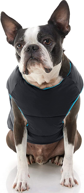 Chaleco con Cierre Espalda Negro Azul para Perros